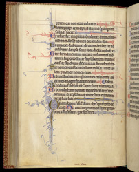 Illuminated Initials, In A Psalter